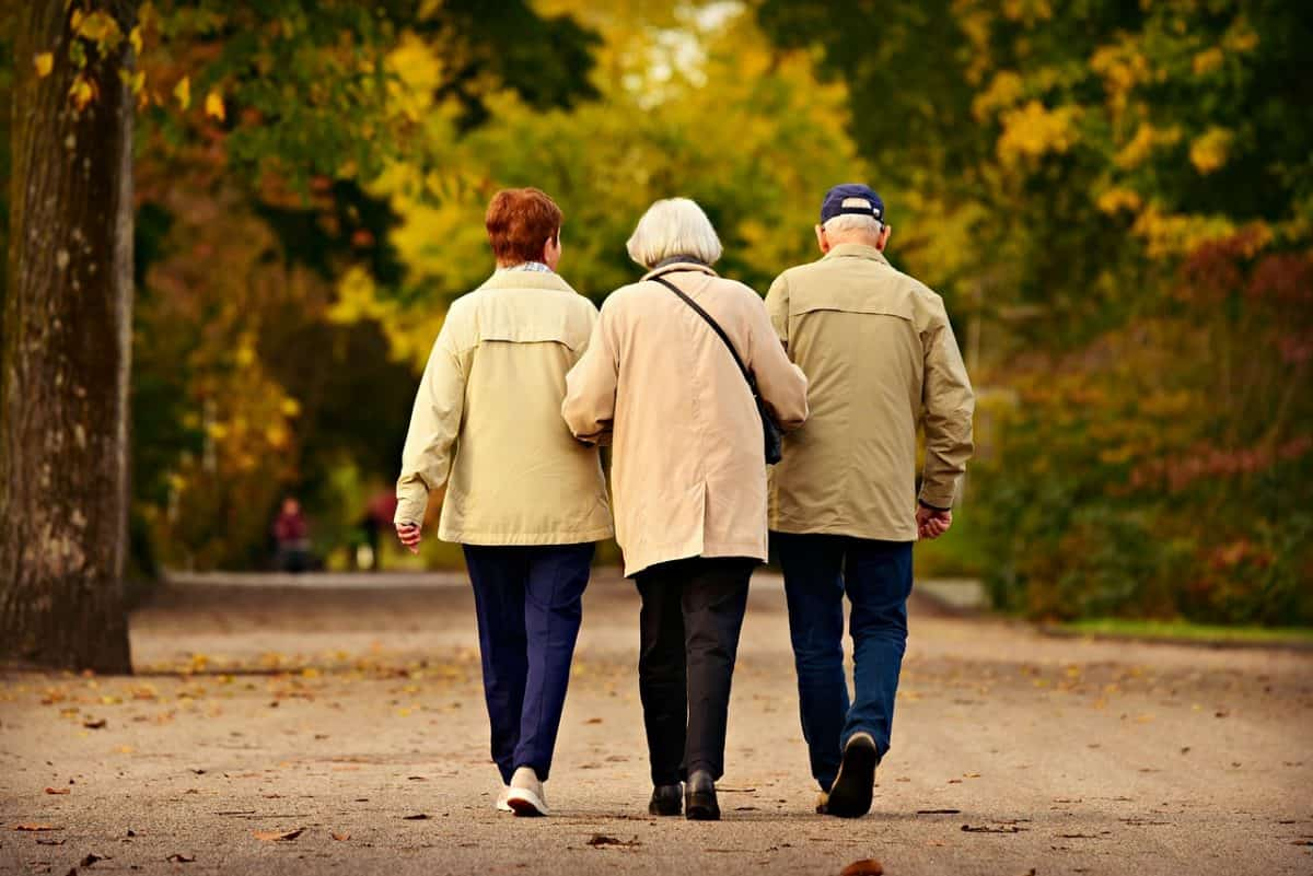 Read more about the article NYC ELDER LAW ATTORNEY